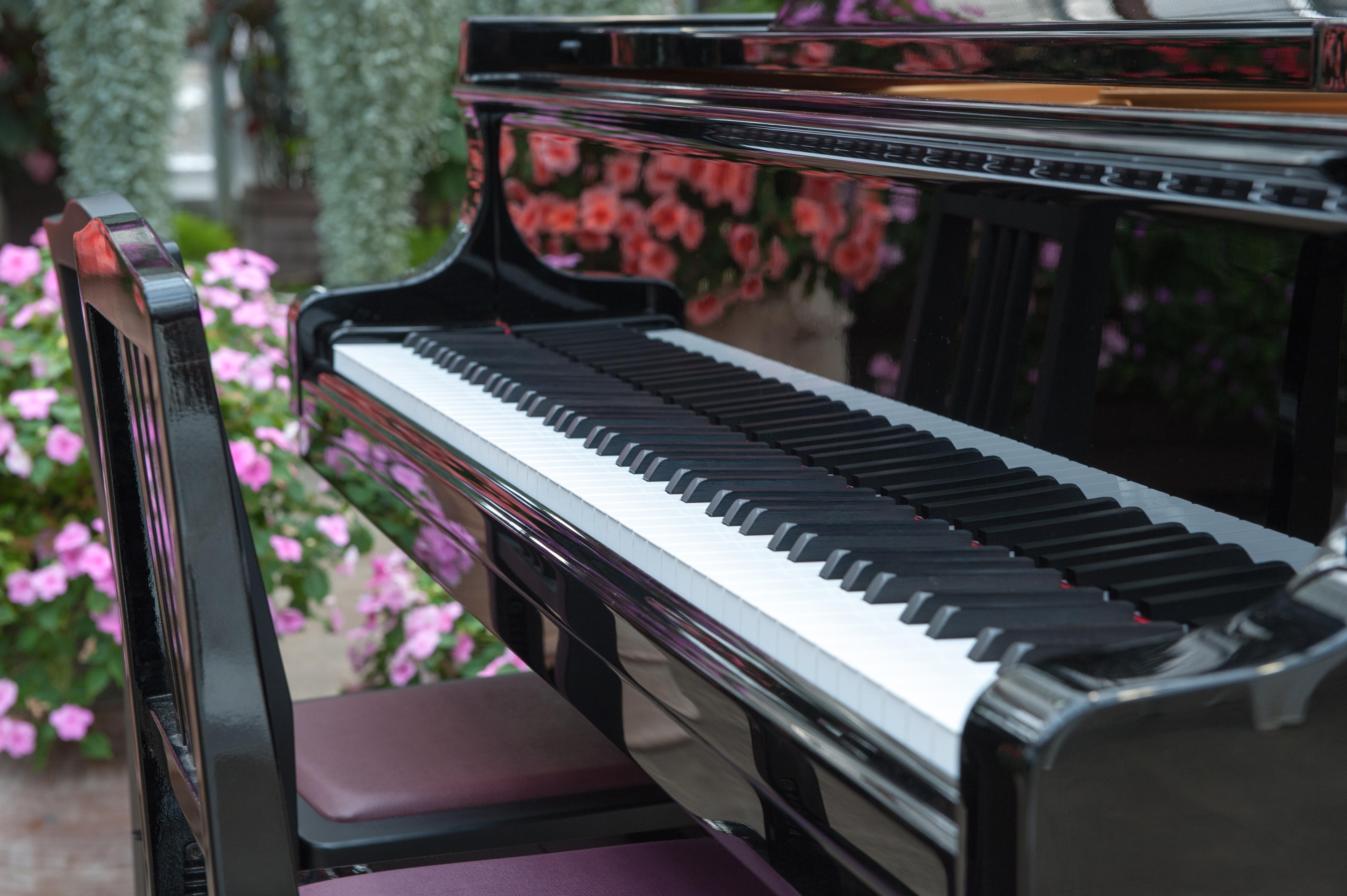 優秀なピアニストによるピアノレッスンはこちら